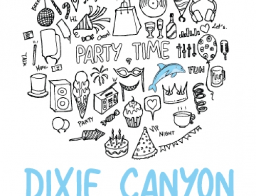 Announcing Dixie Party Book!
